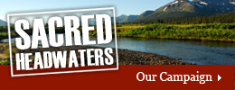 Sacred Headwaters Campaign